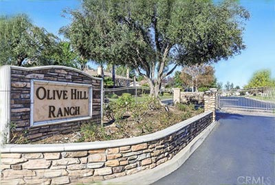 Olive Hill Ranch